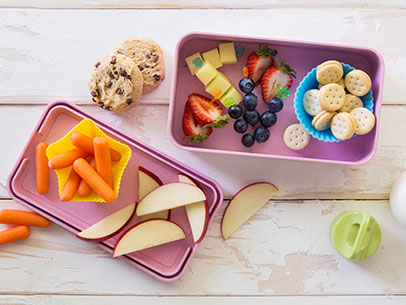 Teacher's Pet Bento Box